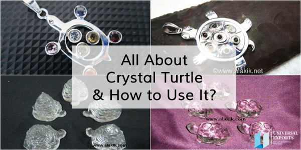All About Crystal Turtle and How to Use It.